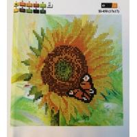 Слънчоглед и пеперуда, SI-450