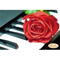 Пиано и роза