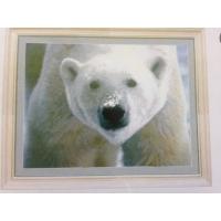 Бяла мечка, СБ - 166