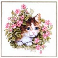 Коте сред цветя