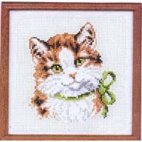 Коте с панделка