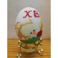 Яйце, Пиленце ХВ